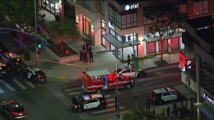 2 LAPD Officers Bitten by Robbery Suspect at AT&T Store in Tarzana: Police