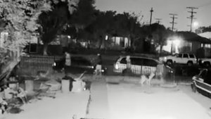 4 Sought in Fatal Shooting of Dog in Front Yard of South Los Angeles Home